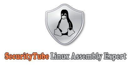 SecurityTube Linux Assembly Expert